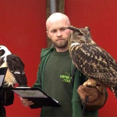 Pöllöjä Lontoon eläintarhassa hoitajineen.