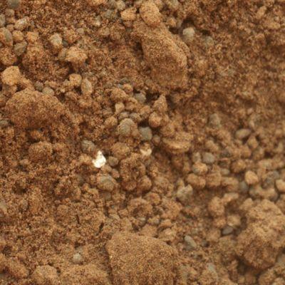 Curiosity-mönkijän ottama kuva Marsista.