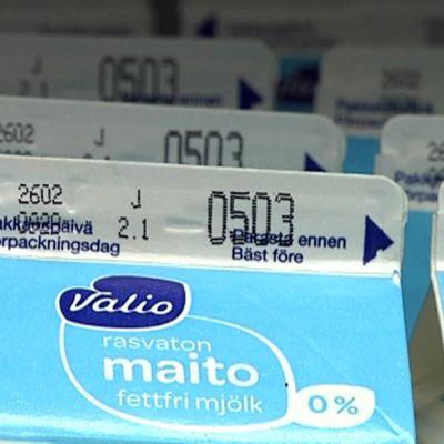 Maitotölkkejä