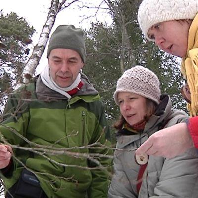 Kuvassa luontokoulujen opettajat Tiina Lecklin, Olli Viding ja Virpi Sahi rastitehtävän parissa Kokkolan luontokoulun lähimaastossa Villa Elbassa.