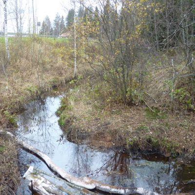 Puro, jossa on öljynimeytyspuomeja.