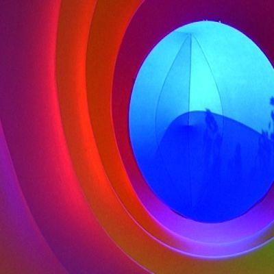 Värimaailmaa kuplakäytävän varrelta. Ulkoa heijastuu sisälle pusikkoa.