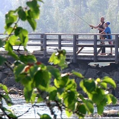 Mies ja poika kalastamassa kulkusillalla aurinkoisena kesäpäivänä.
