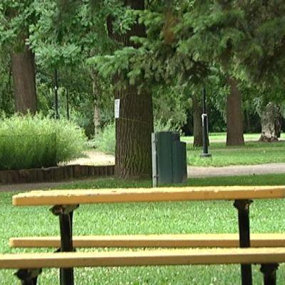 Piknikpöytä Kupittaanpuistossa.