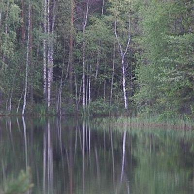 järvenranta Evolla