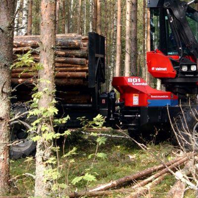 Metsäkone työssä