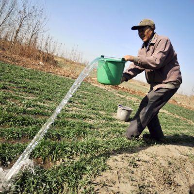 Maanviljelijä kastelee peltoa Itä-Kiinassa.