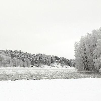 Talvinen maisema Ruissalossa.