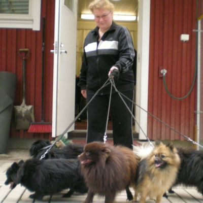 Mervi Pirinen haki koiransa hoidosta Lahden Seudun Lemmikkieläinhoitolasta.