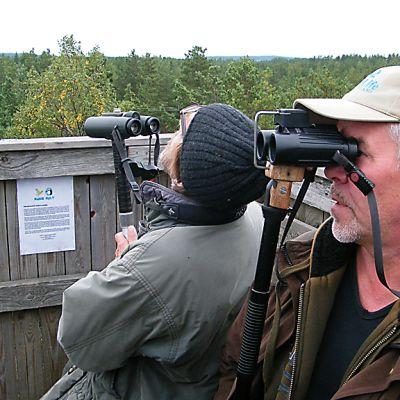 Lintumiehet tarkkailevat muuttolintuja kiikareilla lintutornissa.