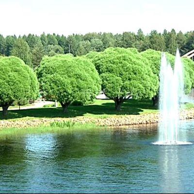 Lieksaan saapuvia tervehtii suihkulähde Lieksanjoessa. Rantapuistossa seisoo pyöreiksi leikattuja salavia.