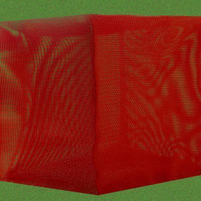 Kaisa Törmänen Punainen kuutio vihreällä nurmella