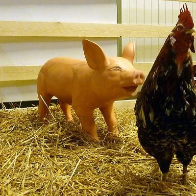 Laivaeläimiä, sika ja kana Merimuseo Vellamossa