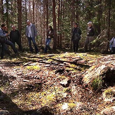 Museovirasto on kartoittanut kesällä mm. Laihian Viirikallion muinaisjäännöksiä.