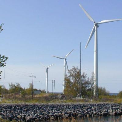 Tuulimyllyt keräävät energiaa Molpessa.
