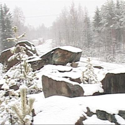 Vasarakankaan entinen kaivosalue.