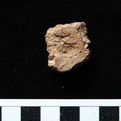 Haminan Viidankankaan yleisökaivauksissa löytyi keramiikanpala, johon on heikosti painunut tuhansia vuosia sitten eläneen ihmisen sormenjälki.