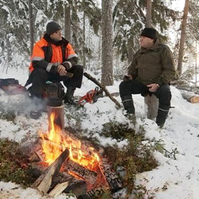 Metsuri Reijo Kontinen ja Puuliiton Lapin aluetoimitsija Reijo Lehtinen lämmittelevät nuotion äärellä kolarilaisessa metsässä.