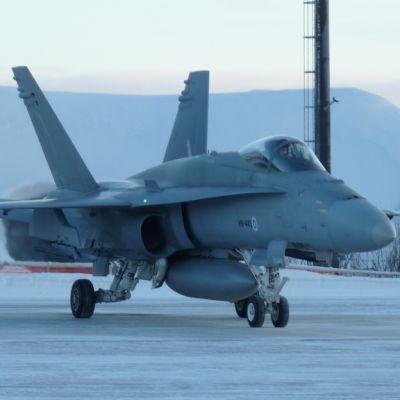 Kuvassa Hornet-hävittäjä.