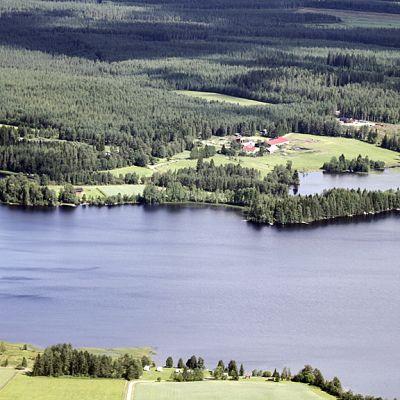 Maatila ja mökkejä Nuasjärven rannalla Sotkamossa ilmakuvassa.