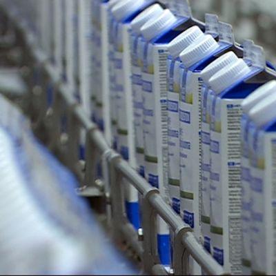 maitotölkkejä kaslinkin tehtaalla kouvolassa