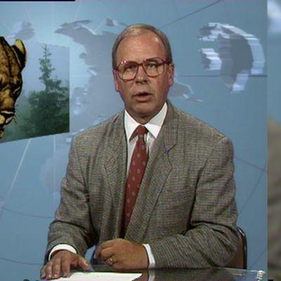 Ruokolahden leijona 1992