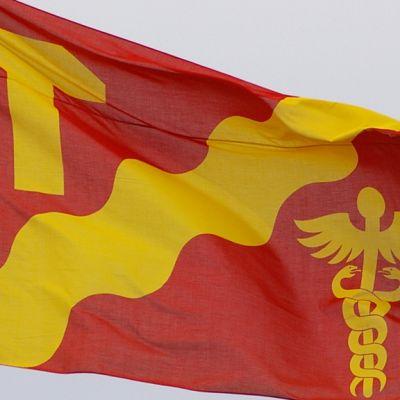 Tampereen lippu liehuu.