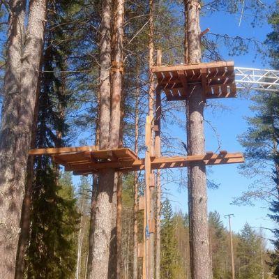 Kiipeilypuiston telineitä puissa.