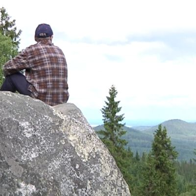 Turisti istuu kallion päällä ihailemassa Kolin kansallismaisemaa.