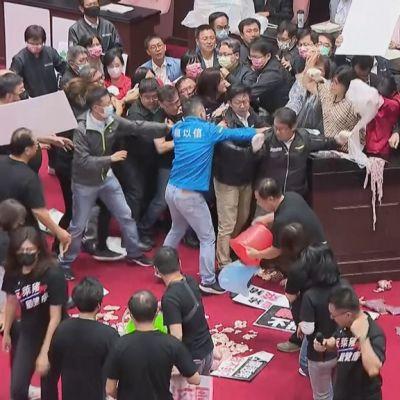 Kuvassa kansanedustajia kahakoimassa Taiwanin parlamentissa.