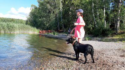 En flicka med blå keps och rosa t-skjorta och hennes svarta hund står och tittar ut från en havsstrand.