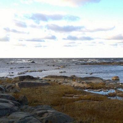 Näkymä Hanhikivenniemeltä merelle