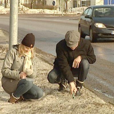 Opiskelijat keräävät luminäytteitä tien varresta.