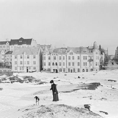 Ulrikasborg H:Fors