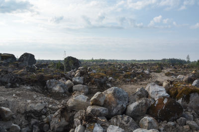 Kalhygge med stora stenar.