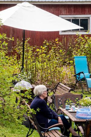 Två kvinnor sitter i en grönskande trädgård, vid ett bord dukat med kaffekoppar.