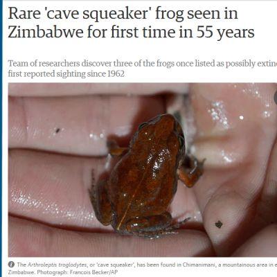 sammakko kädessä