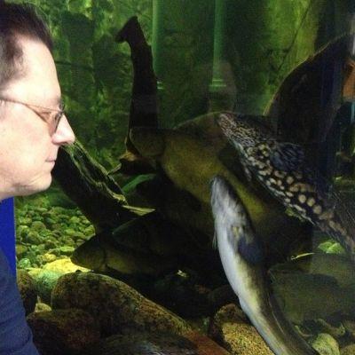 akvaristi sukeltaja Juhani Soinila katselee mateita altaassa