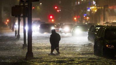En man vadar genom en översvämmad gata i New York, upplyst av lamporna från bilar som har fastnat i vattenmassorna.