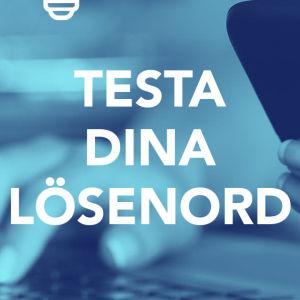 Bild med texten; Testa dina lösenord.
