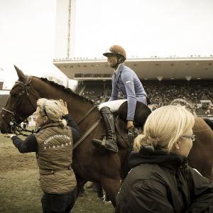 Ratsastaja kiristää satulavyötä, hoitaja pitelee hevosta