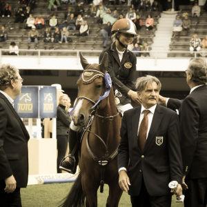 Tuomarit jakavat palkinnon ratsukolle