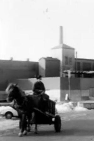 Skitkusk Henry Lindberg i Dalsbruk, 1977
