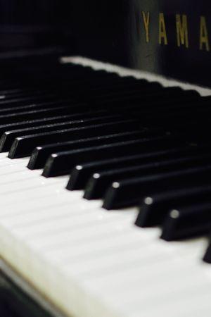 pianon koskettimet, piano