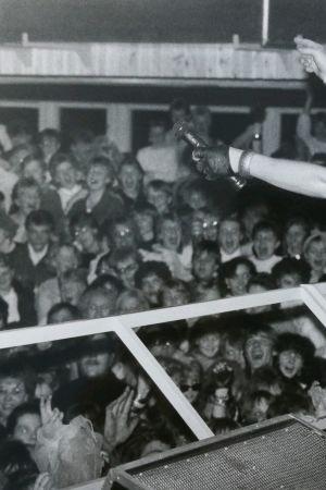 Dingo villitsi Lallintalolla 1980-luvulla.