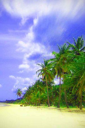 hiekkaranta, palmuja, käsitelty kuva