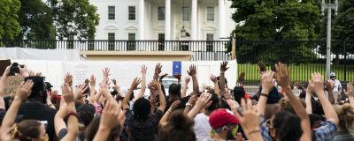Människor demonstrerar utanför Vita huset i Washington.