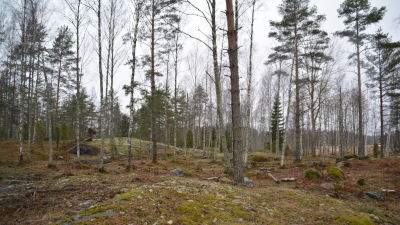 Kopparnäs, Ingå.