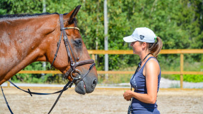 En häst och en ridlärare.