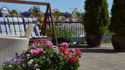 En balkong med blommor i krukor och en gunga.